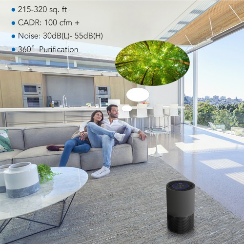 Air Purifier For Allergies Home Powerful